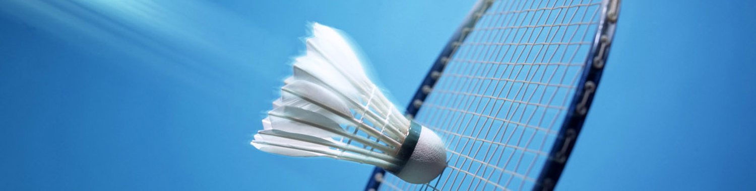 Badminton cover