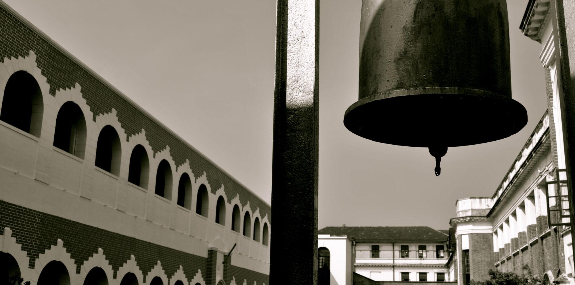 Royal College | Disce aut discede